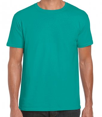 basic t shirt jade dome